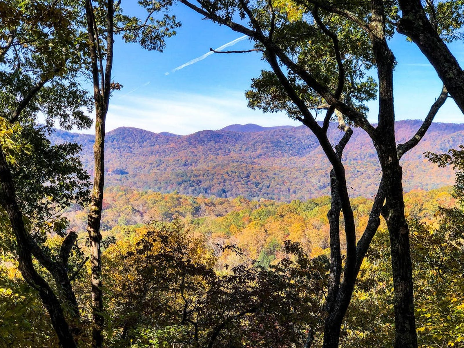 blue ridge georgia mountains and forest view