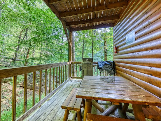 Pet-friendly cabin deck with picnic table and grill in Gatlinburg, TN