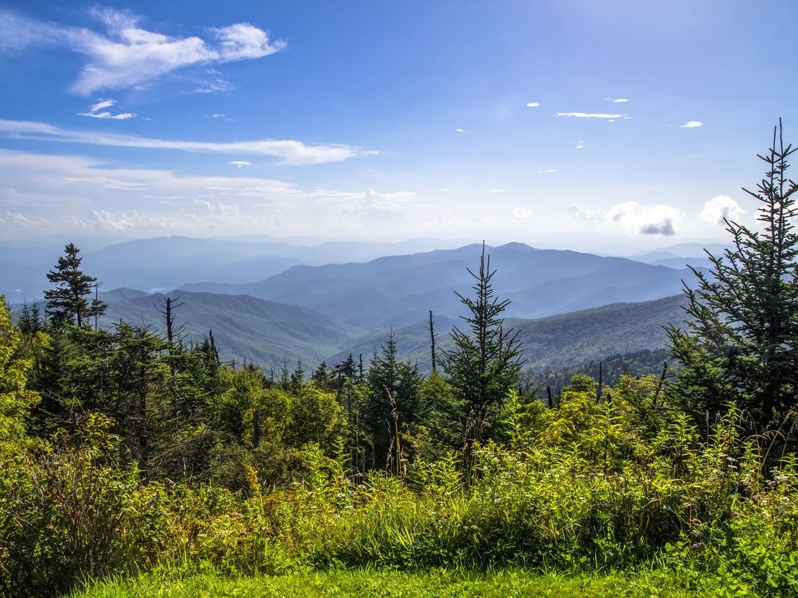 Gorgeous day in the Smoky Mountains