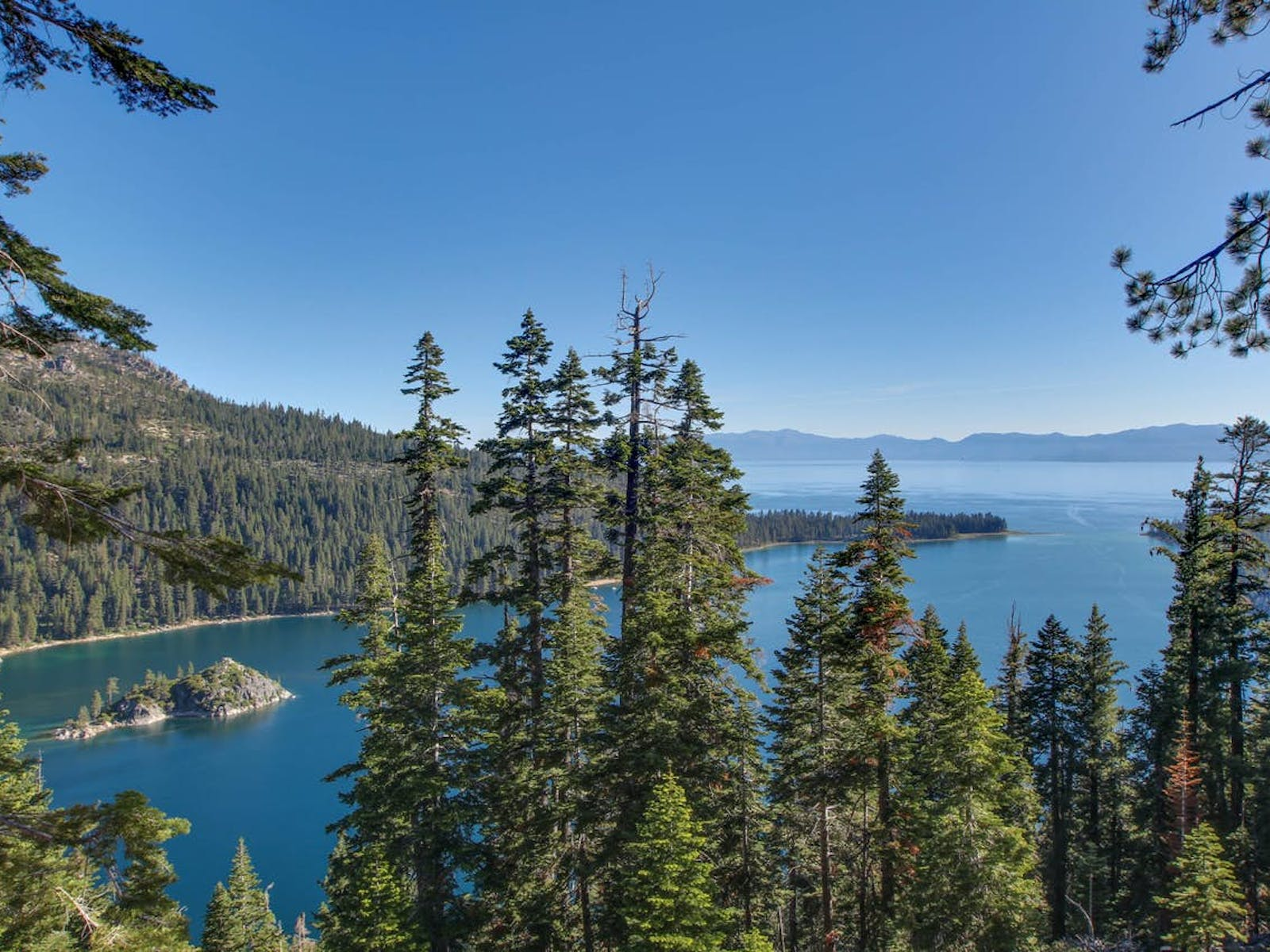 south lake tahoe with blue skies and pine trees