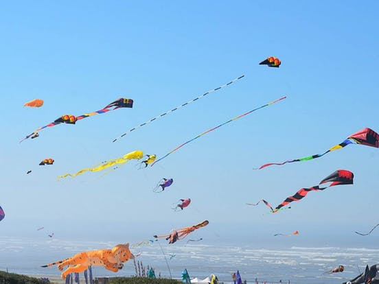 Kites flying above the beach in Ocean Shores, WA