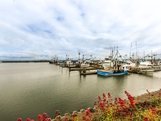 Marina located in Westport, WA