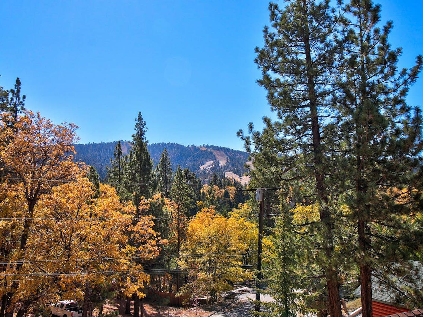 Pine trees surround beautiful Big Bear, CA