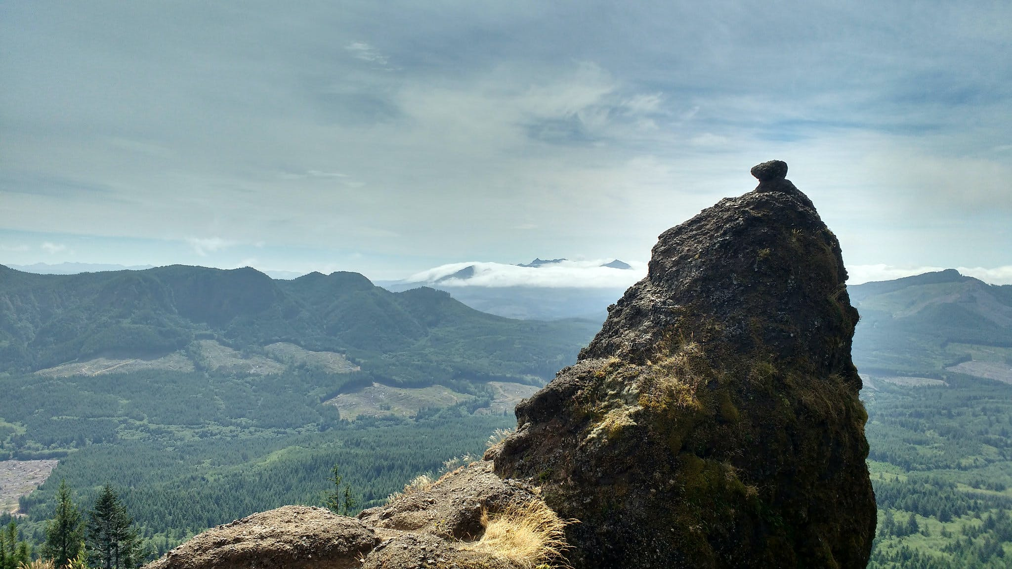 A Carrion Placed At The Top Of Saddle Mountain Hike