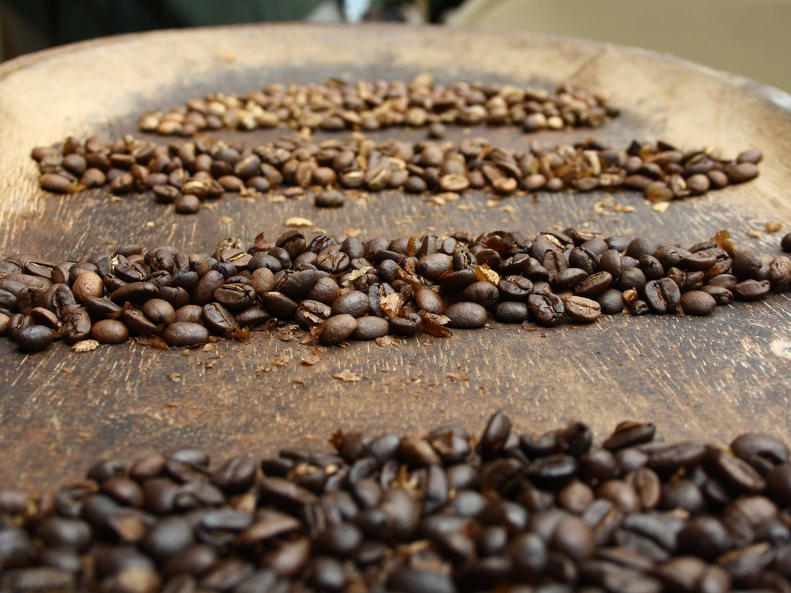Coffee beans on wooden tray
