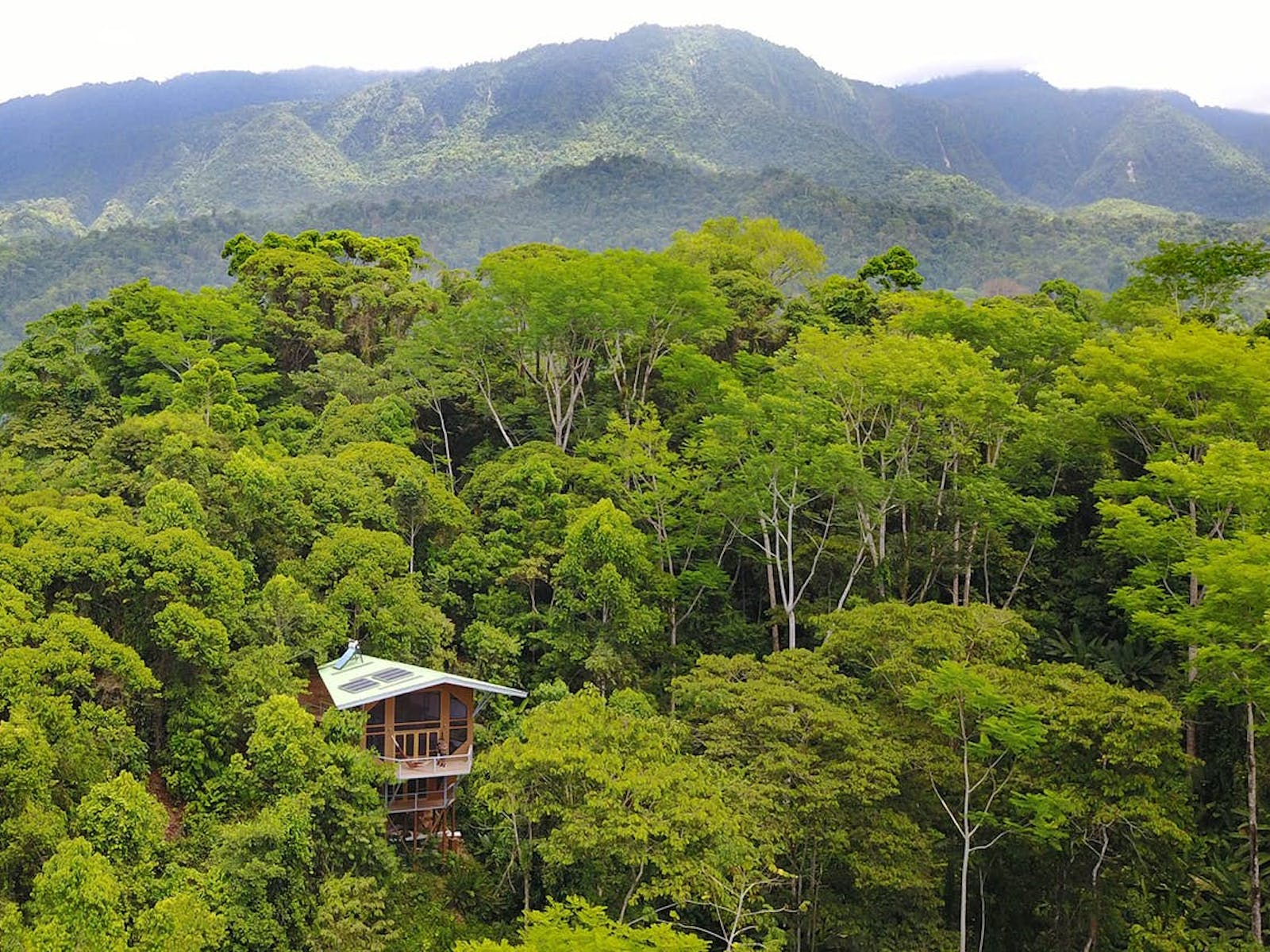 Treehouse nestled within the Costa Rican rainforest