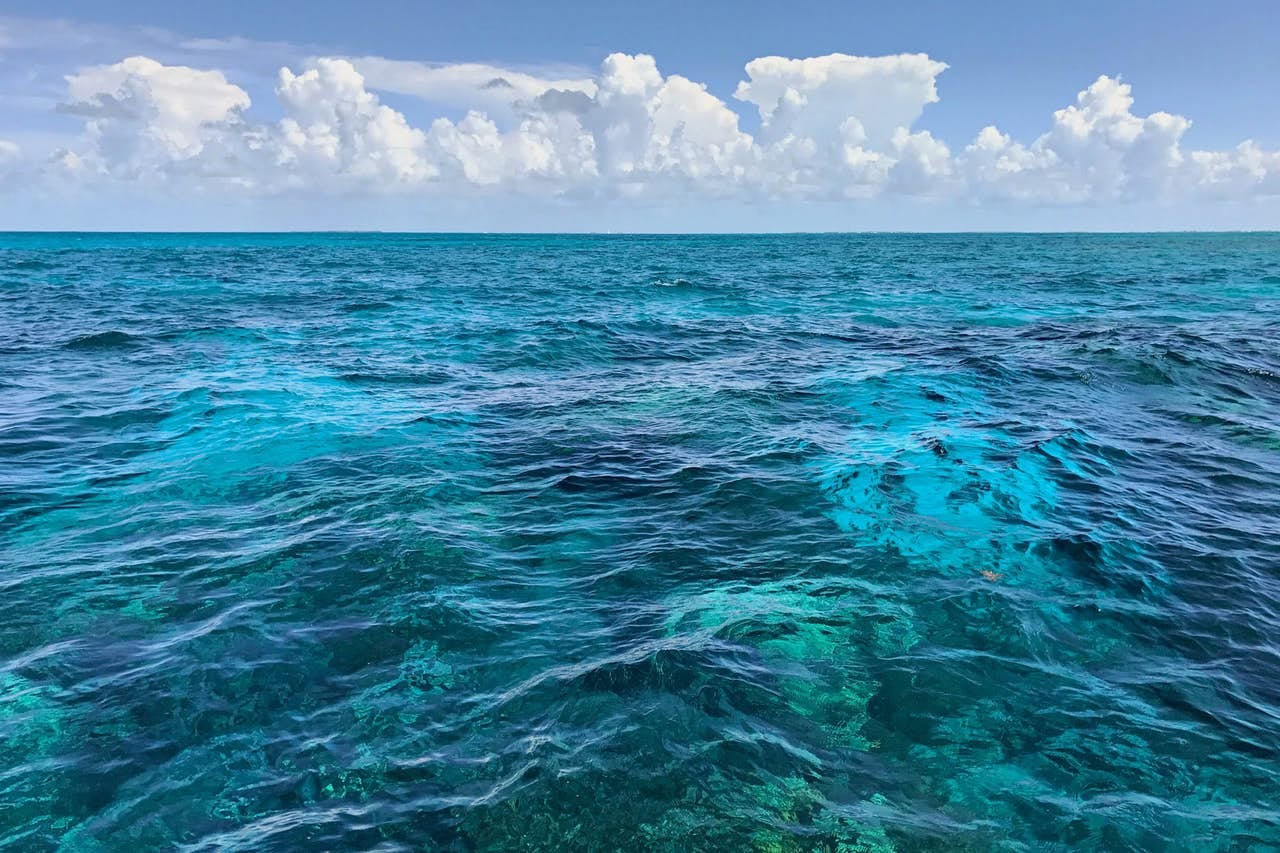 Clear blue water is perfect for snorkeling in the Florida Keys