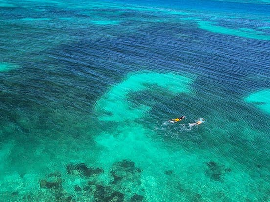 Two vacationers snorkeling in the Florida Keys