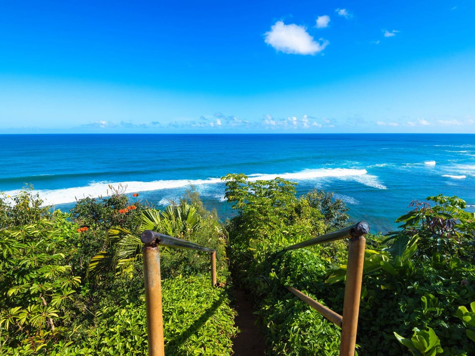 Stairway in Hawaii surrounded by lush scenery that leads to the ocean