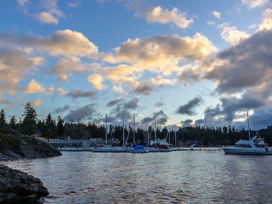 sail boats docked on a lake