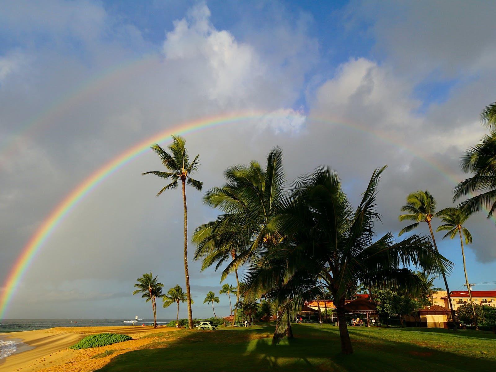 a rainbow shining above the beach and palm trees in Kauai