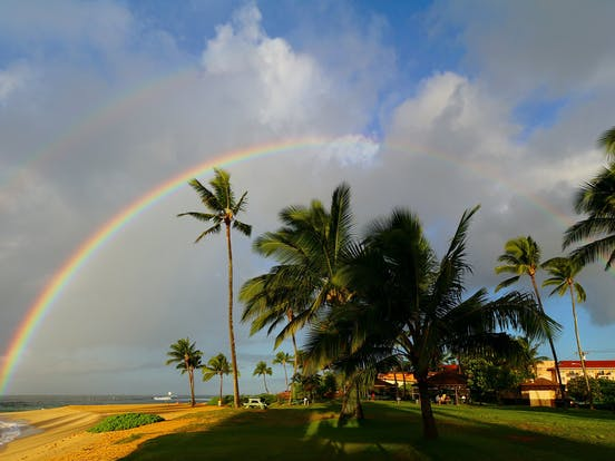 a rainbow shining above the beach and palm trees in Kauai