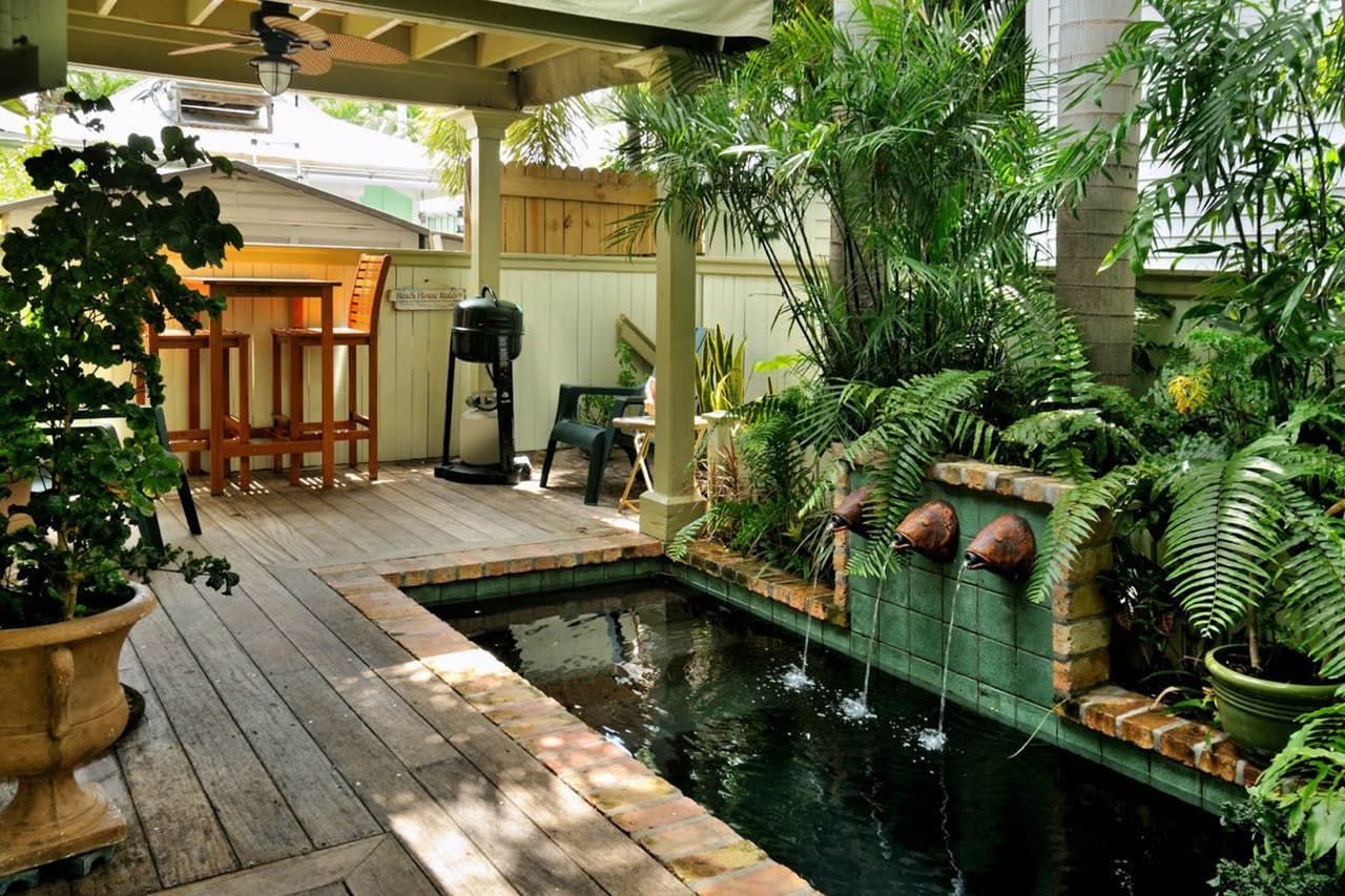 a luscious backyard with a wading pool