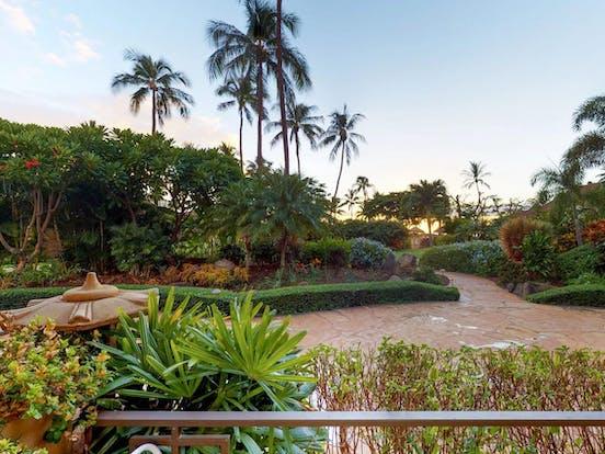 Tropical and lush greenery from Maui Kaanapali Villas