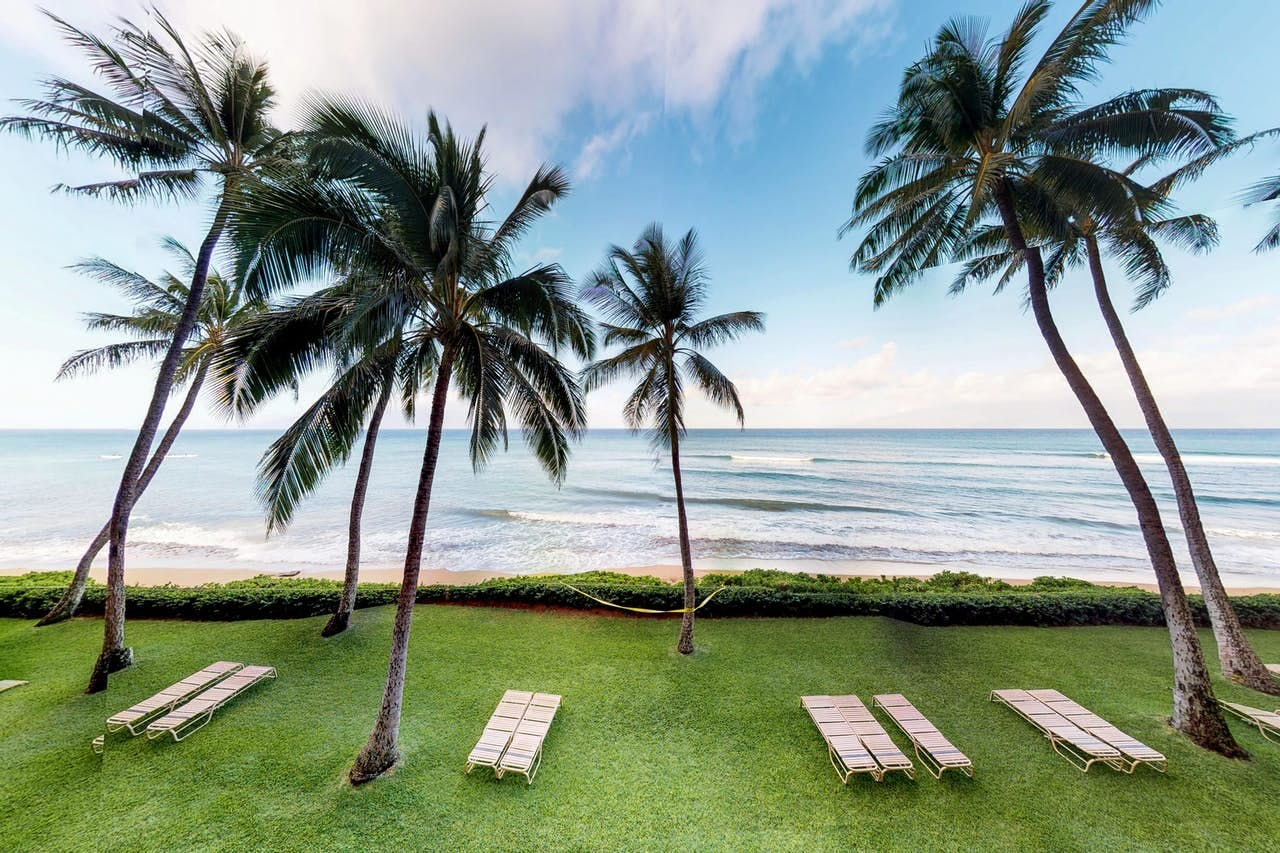 Green grass, palm trees and ocean waves of Lahaina