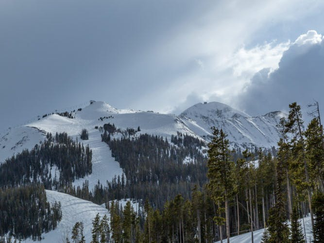 a view of the top of a mountain with ski runs cutting between the trees