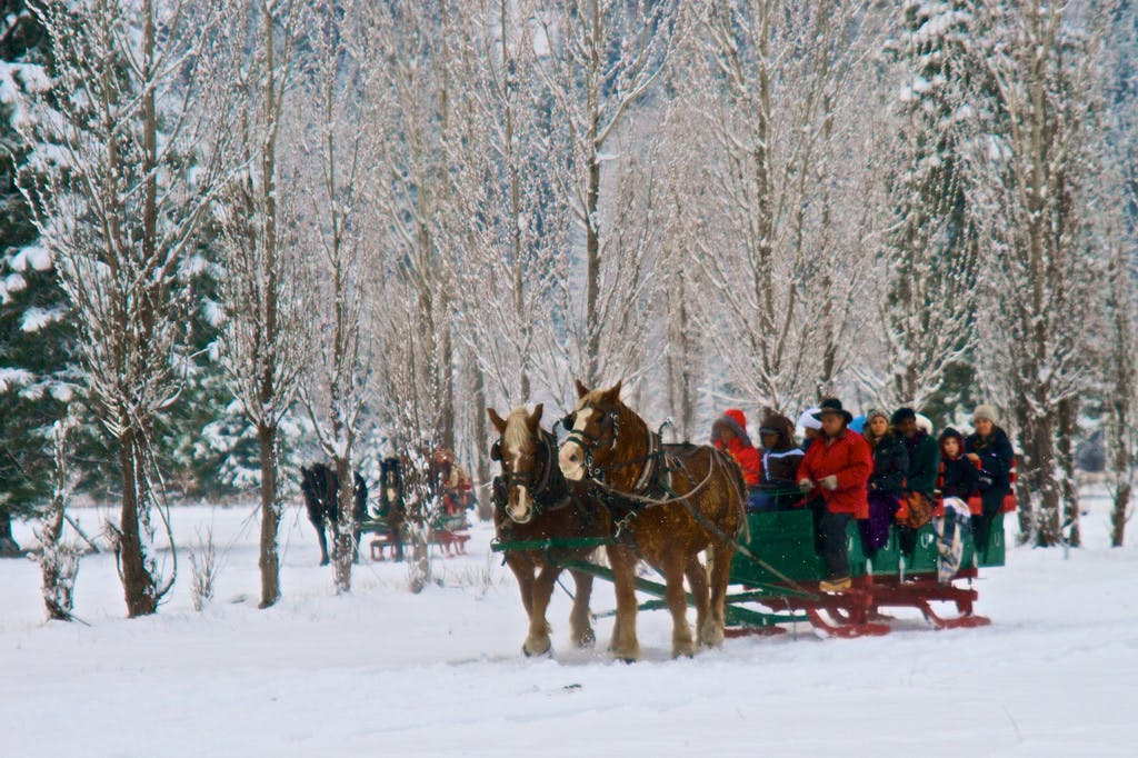 Winter sleigh rides in Leavenworth, wa