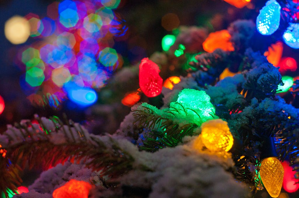 Christmas lights on a snowy tree