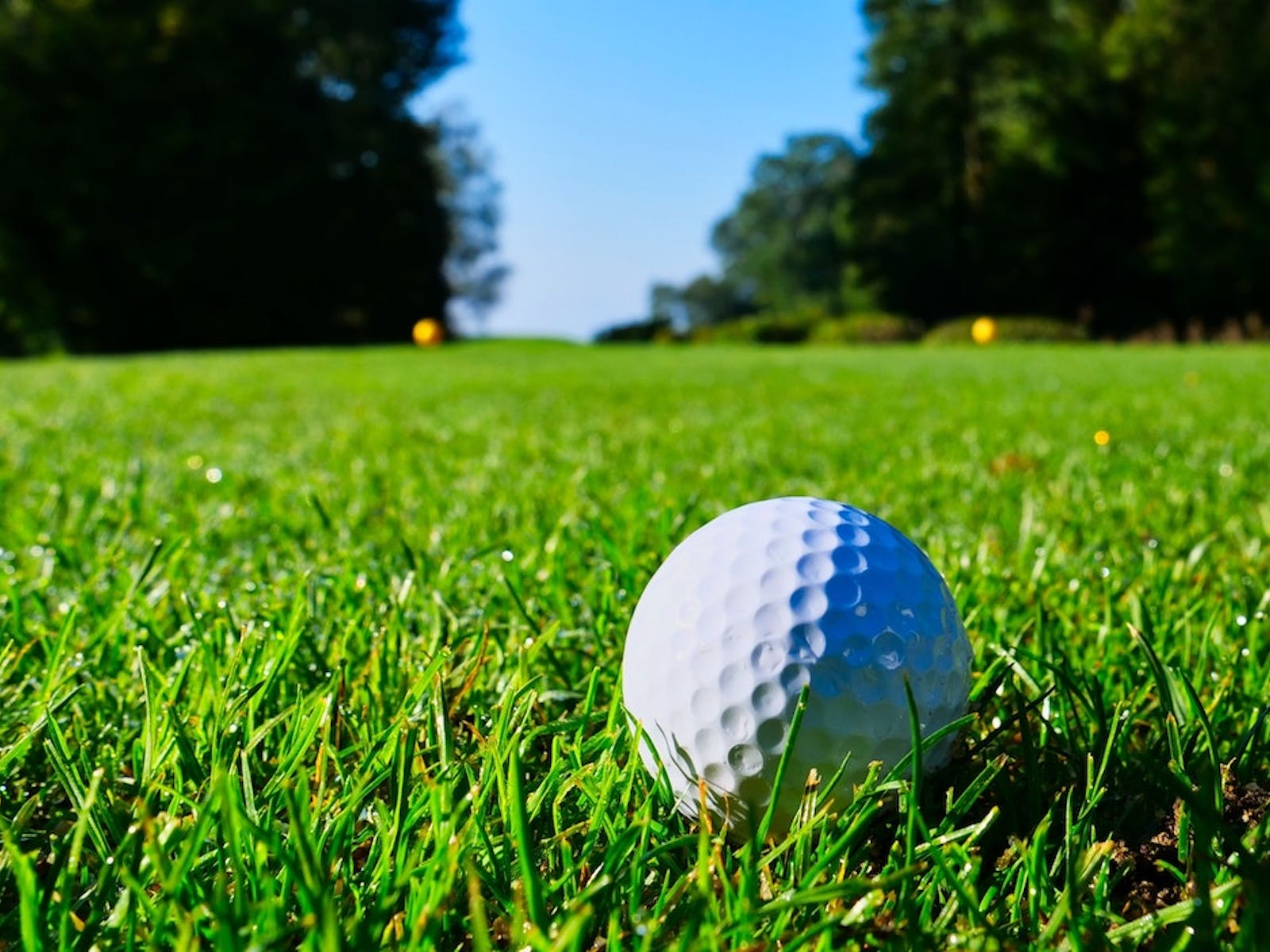 Golf ball on the greens