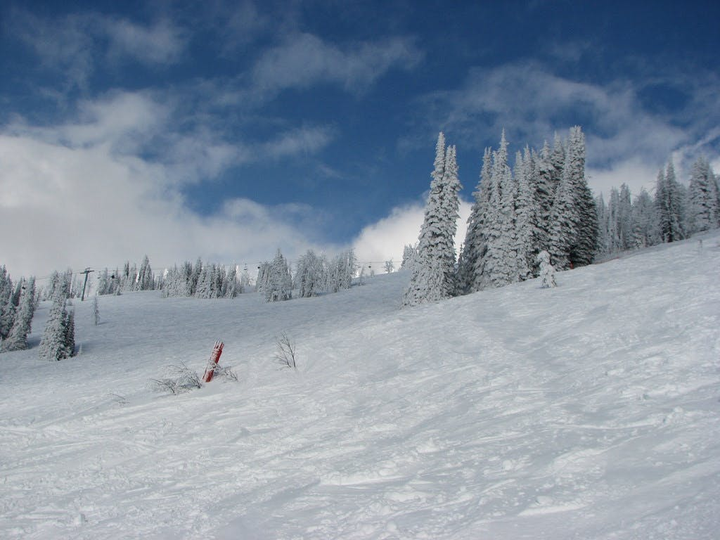 looking up a ski run at Brundage Mountain in McCall