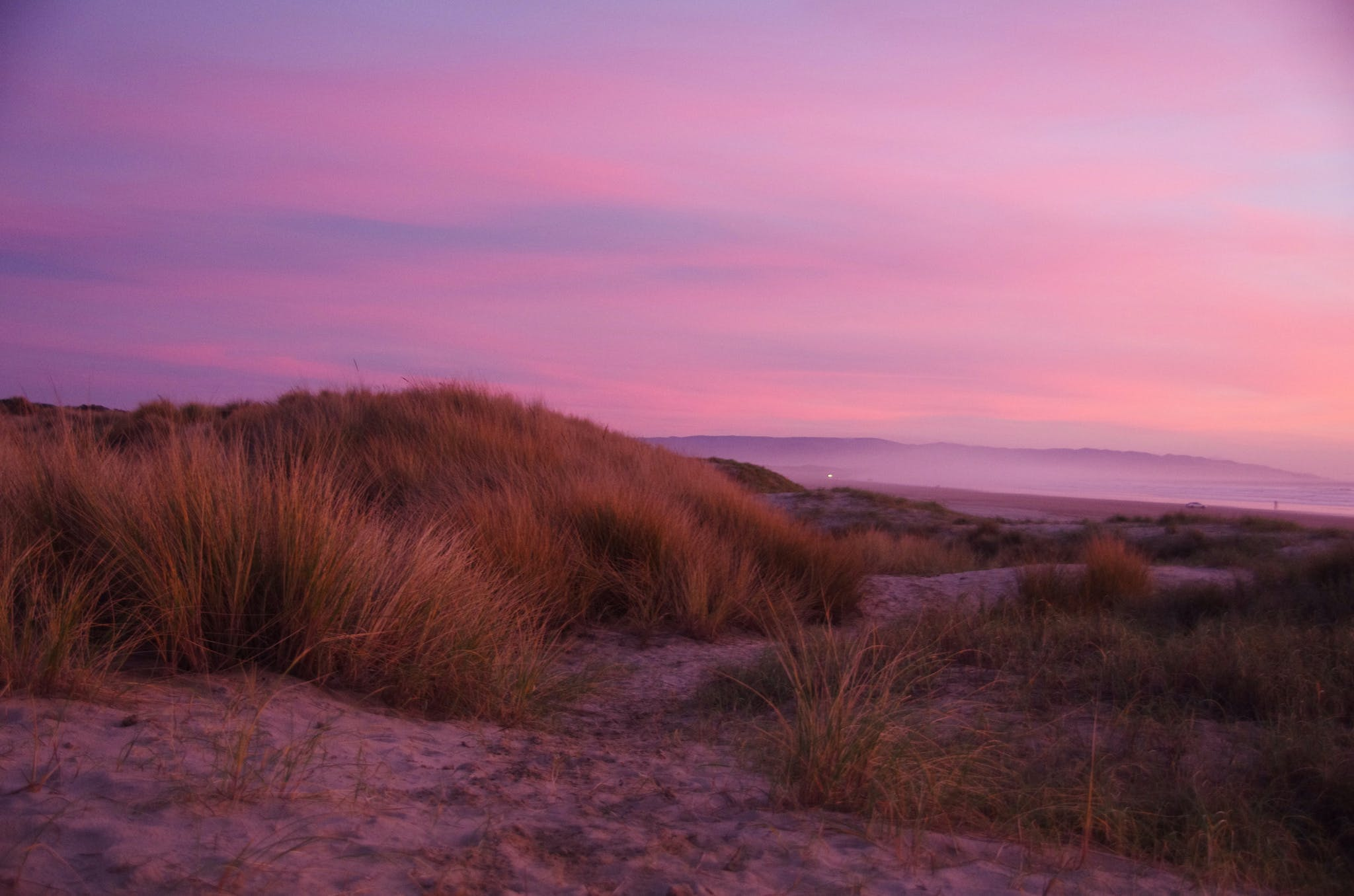 sunset making a purple sky over the dunes of pismo beach