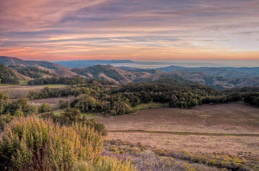 a view of the rolling hills stretching over paso robles
