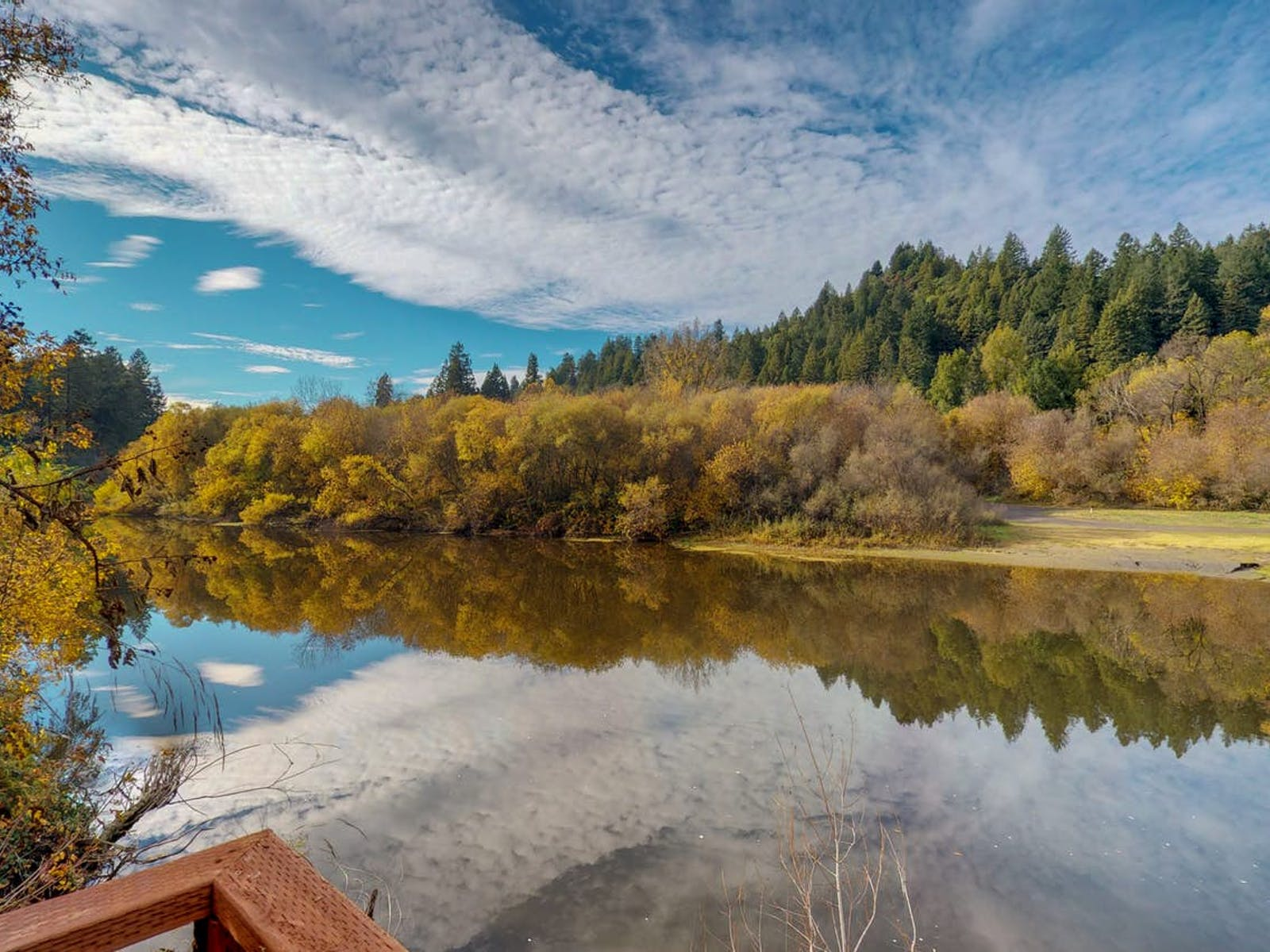 dog-friendly vacation rental in Sonoma County, CA sitting on the bank of the Russian River