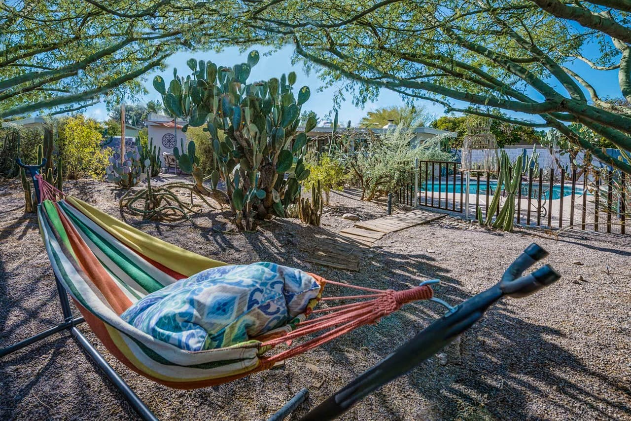 a rainbow colored hammock surrounded by cactuses in a phoenix yard