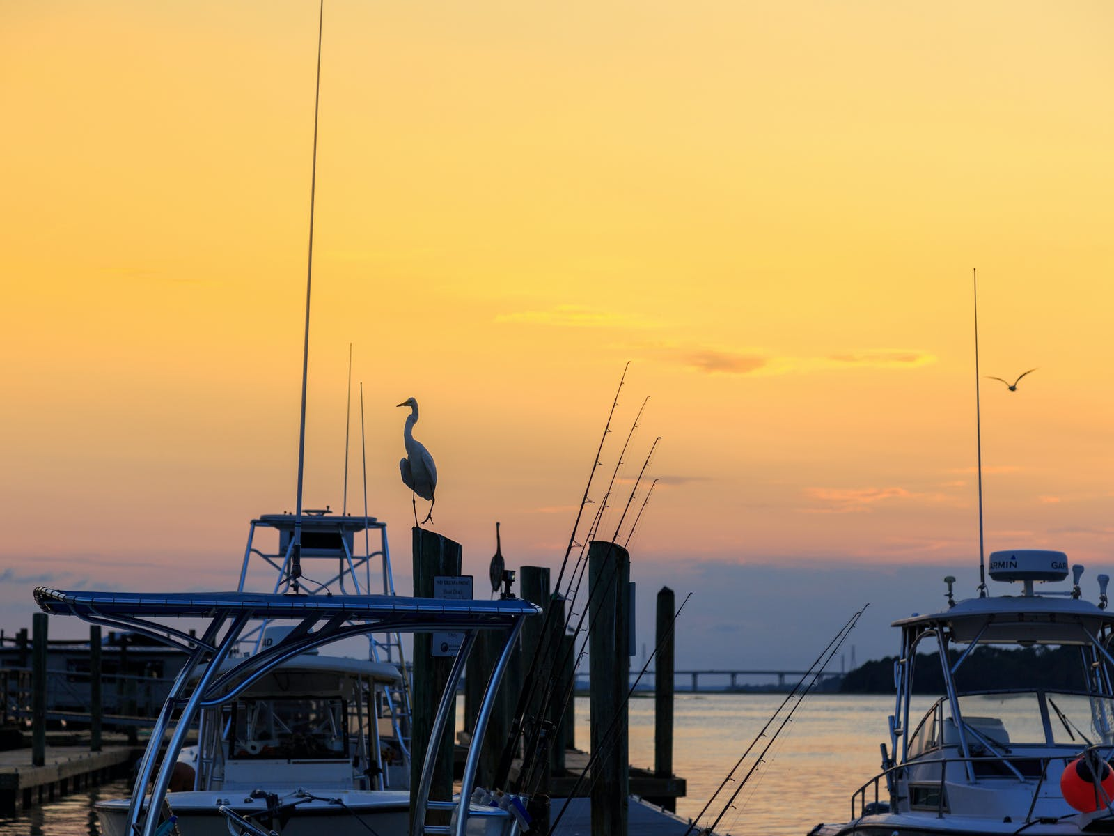 A few boats docked in Hilton Head, South Carolina