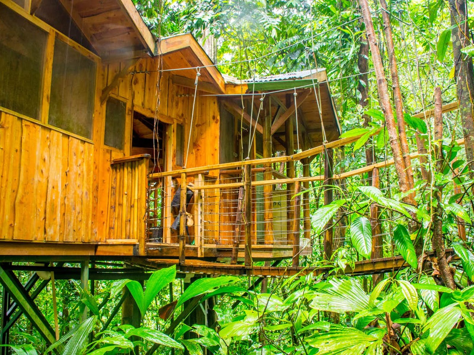Treehouse in Costa Rica surrounded by rainforest