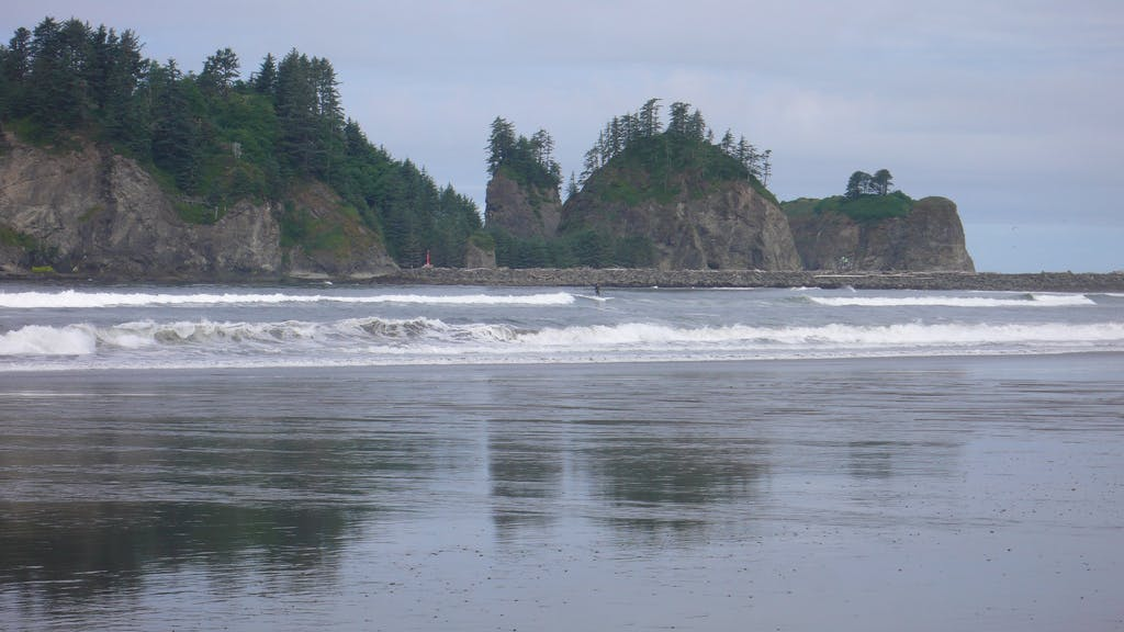 the waves rolling in on the coast of La Push