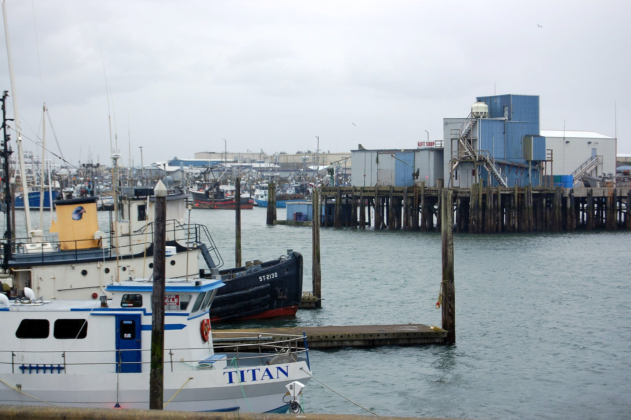 boats anchored at the docks on a cloudy day near westport, washington