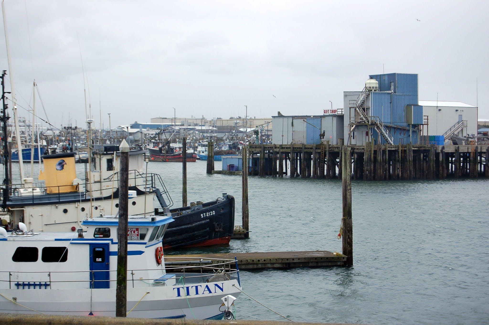 boats anchored at the docks on a cloudy day near westport, washington