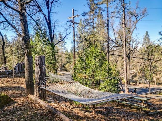 hammock of Groveland, CA vacation rental